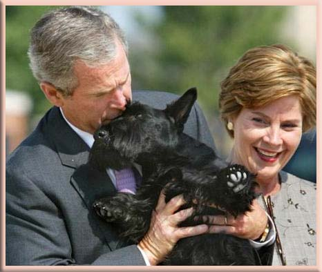 Welcome to Rosemary Osho's Blog: Former President George W ...