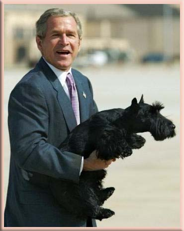 George W Bush with dog